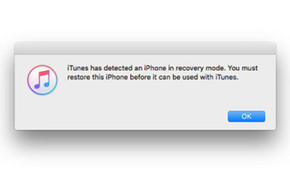 step-7-iphone-in-recovery-mode