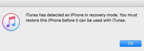 itunes-detected-in-recovery-mode-step-2