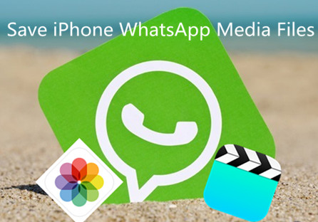 How to Save iPhone WhatsApp Media Files