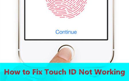 How to Fix Touch ID Not Working