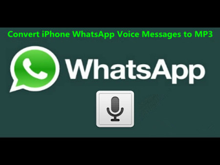 Convert iPhone WhatsApp Voice Messages to MP3