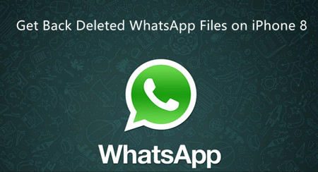 Get Back Deleted Files of WhatsApp on iPhone 8