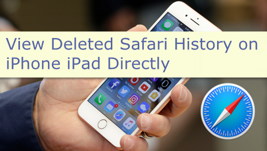 View Deleted Safari History on iPhone iPad Directly
