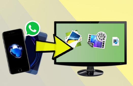 Transfer Audio Messages from WhatsApp to PC